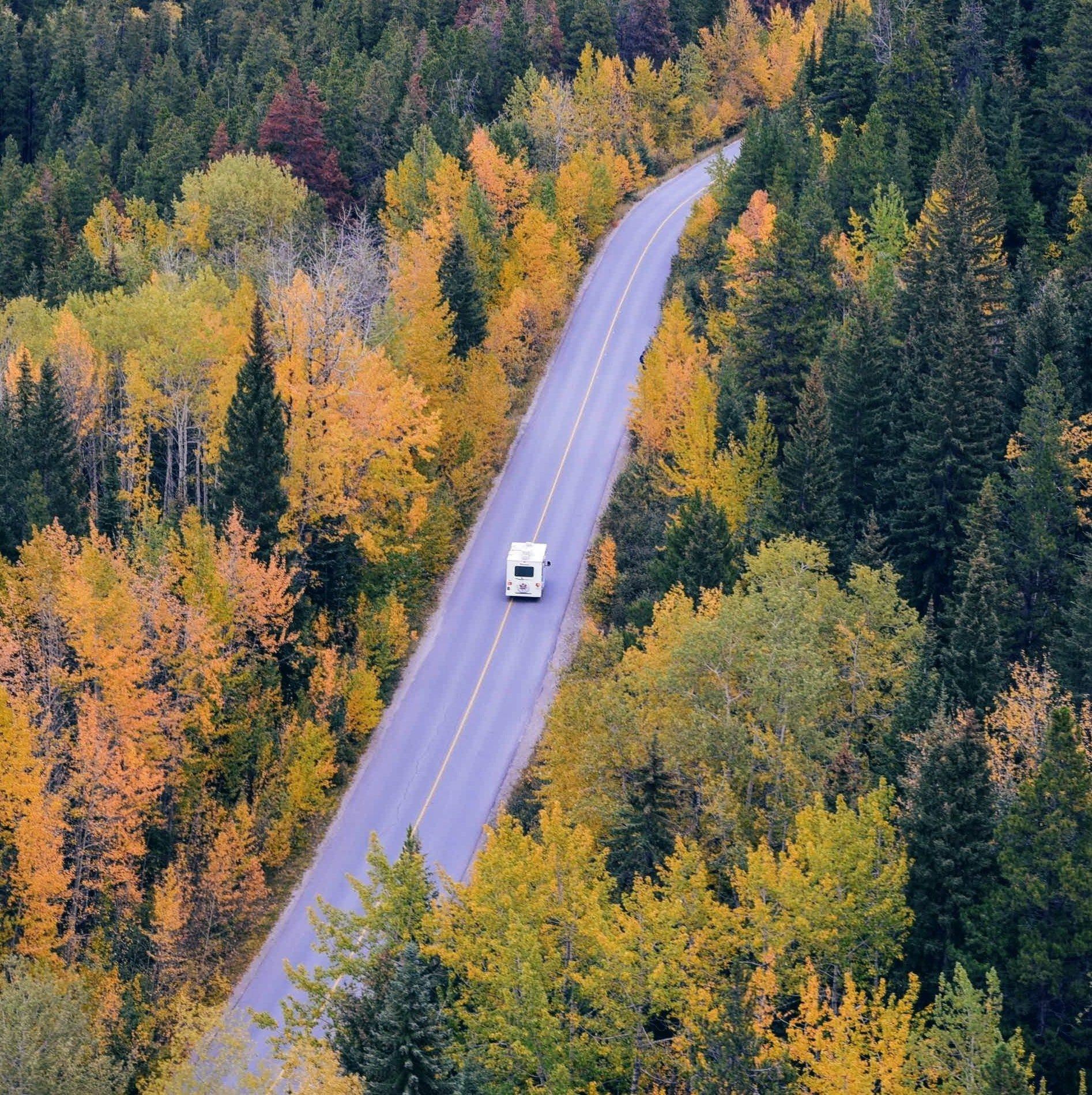 white-car-traveling-near-trees-during-daytime-24698